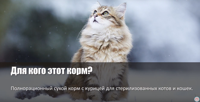 Корм брит для котов