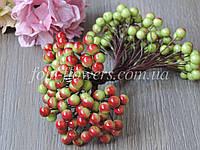 Калина глянцевая Оливково-красная, 0,9 см