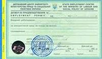 Оформление разрешительных документов для иностранцев / Permits for expats