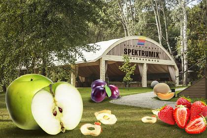 «SPEKTRUMIX» – вкусная, здоровая еда и мамам, и детям!