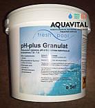 Химия для бассейна Chemoform | pH плюс в гранулах (5 кг), фото 7