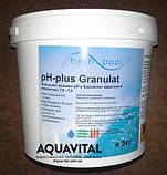 Химия для бассейна Chemoform | pH плюс в гранулах (5 кг), фото 9