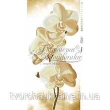 Бисерная заготовка для вышивки схемы-картины Золотистые Орхидеи