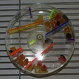 Іграшка-Годівниця для папуги (Лабіринт), фото 3