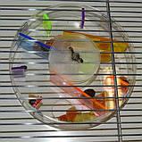 Іграшка-Годівниця для папуги (Лабіринт), фото 4