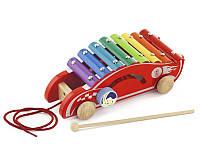 Игрушка-каталка Машинка Viga toys (2 в 1 каталка-ксилофон) (50341)