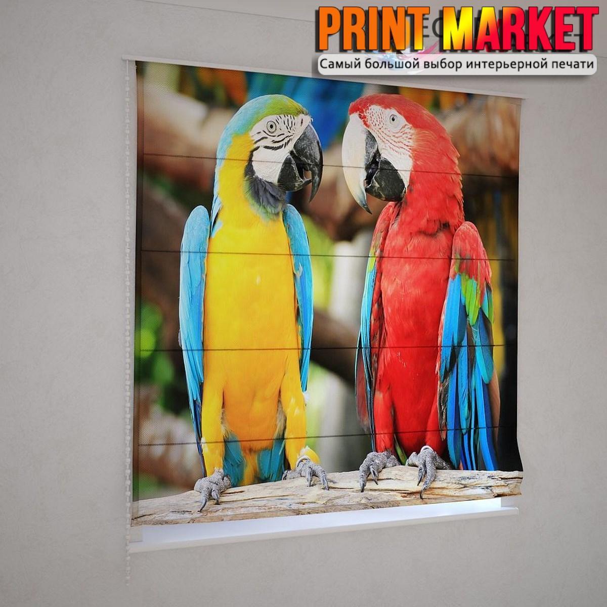 Римские шторы попугаи