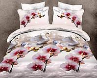Двуспальный набор постельного белья Ранфорс №079
