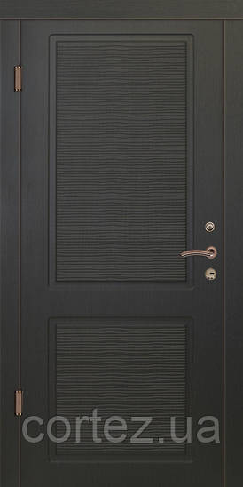 Входные двери стандарт Верона 6
