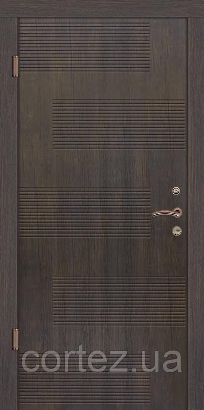 Входные двери стандарт Лион