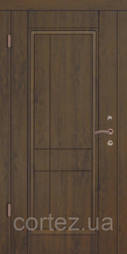 Двери входные Премиум Милан темный
