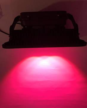 Светодиодный фитопрожектор SL-200GLens 200W IP66 (full fito spectrum led) Код.58941, фото 2