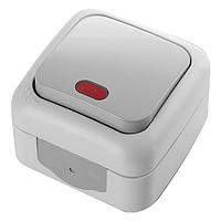 Выключатель с подсветкой влагозащищенный белый, серый Viko Palmiye