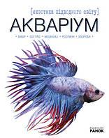 РИбки екзотика підводного світу