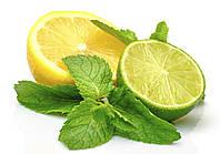 Ароматизатор Lemon Lime II (Лимон и Лайм), TPA/TFA ТПА, USA