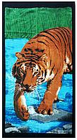Полотенце пляжное Тигр (Pliag-012)