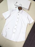 Мужские футболки поло Dior