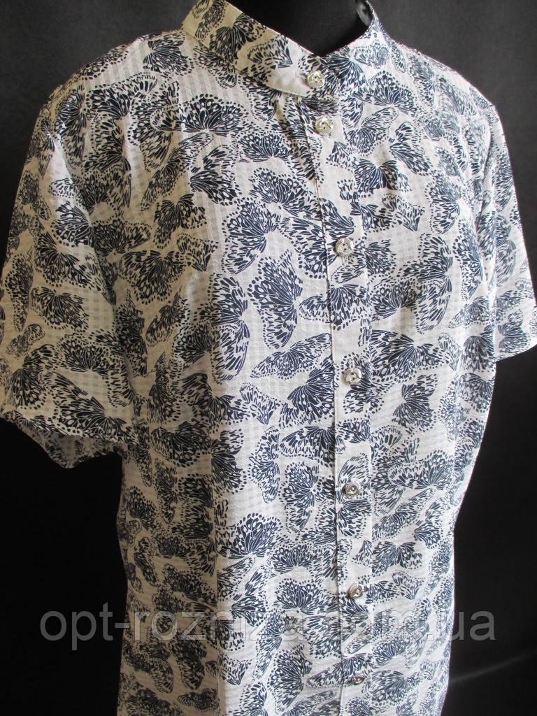 Летние женские блузы от производителя.