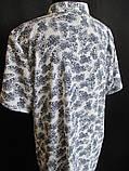 Летние женские блузы от производителя., фото 4