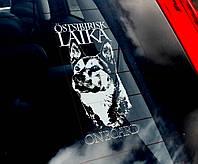 Восточно-сибирская лайка  стикер, фото 1