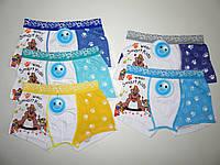 Трусики-шортики для мальчиков Ai-nian оптом,S-XXXl pp.