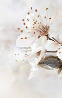 Керамическая плитка декор Сакура коричневый