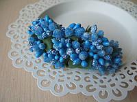Тычинки сложные на веточках.Цвет голубой насыщенный.