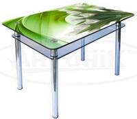 Стол обеденный стеклянный ОС11