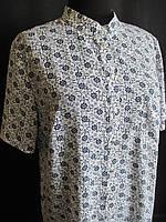 Женские блузы с коротким рукавом большого  размера., фото 1