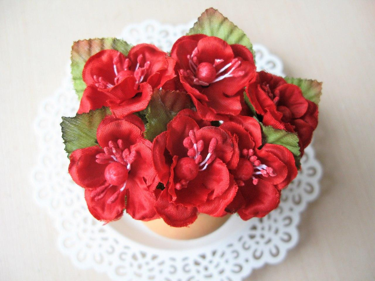 Цветы вишни с листиками цвет красный.