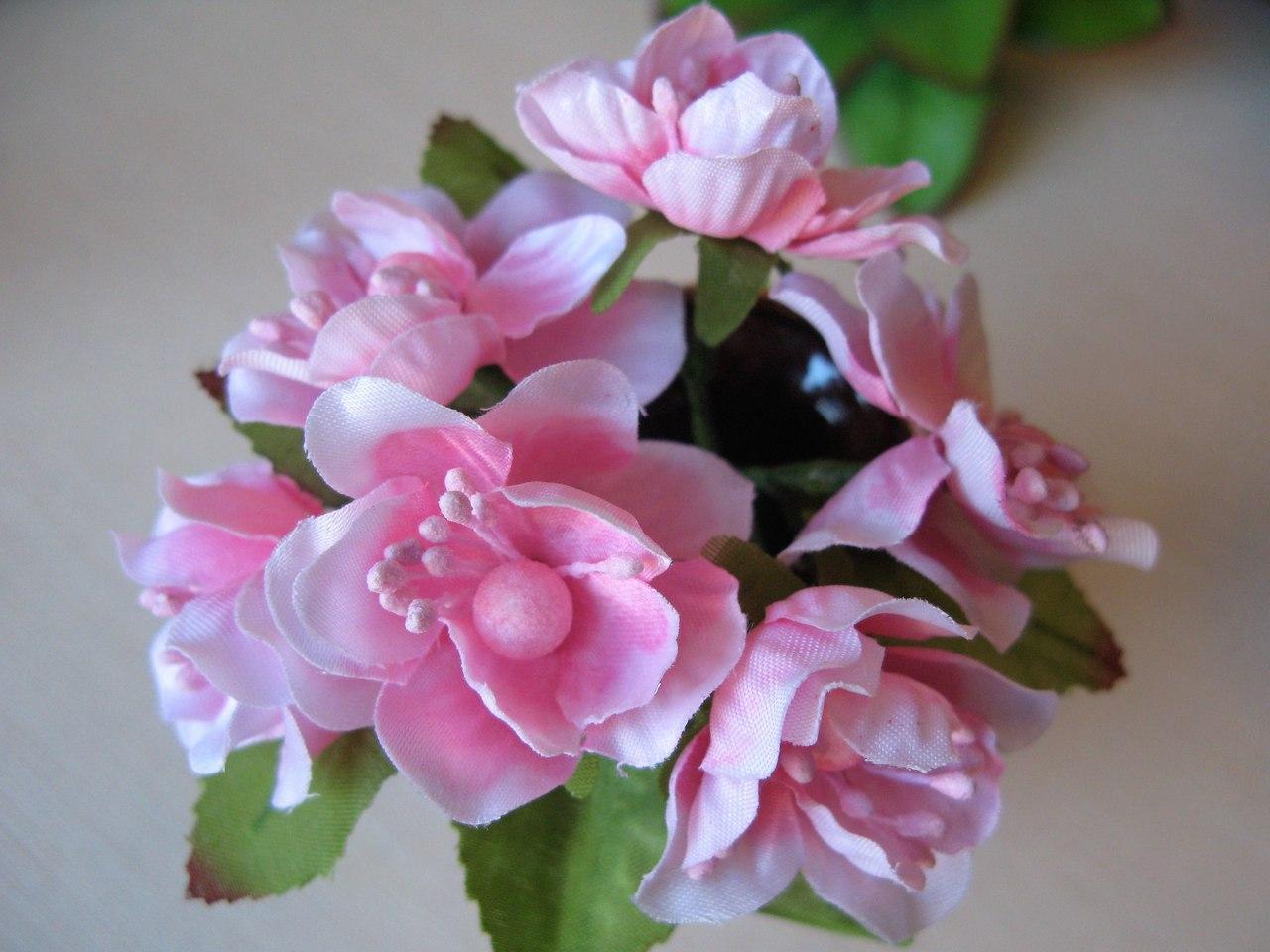 Цветы вишни с листиками цвет розовый.
