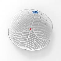 Ароматизированные с ароматом яблока защитные решетки/экраны для писсуара CLEAN and CLEVER Screen®