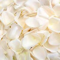 Лепестки роз искуственные разные цвета 200 гр белые
