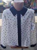 Симпатичная рубашка в школу для девочки 550-102