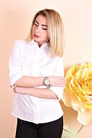 Рубашка женская Коттон 043,  белая рубашка женская