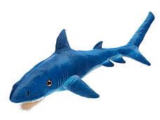 Акулы и дельфины