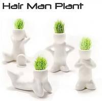 Травянчики одинарные бел. / керамический травянчик / hair man plant