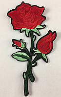 Роза клеевая, фото 1