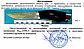 """Надійний мисливський ніж """"Хижак"""". 2290 VWP, фото 7"""