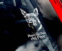 Перуанская голая собака стикер