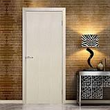 Двери межкомнатные Омис Гладкая глухая экошпон,  цвет сосна сицилия, фото 2