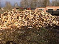 Купить дрова для бани Киев и область дуб акацыя