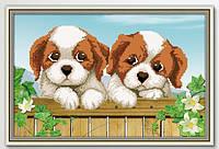 """Набор для вышивки крестиком """"Собачки на природе"""" 3D"""