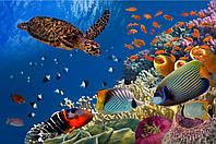 Панно Черепаха в море УФ на кафеле, плитка 20х30см.