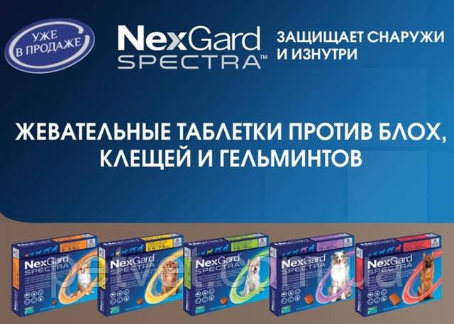 Новинка! Нексгард Спектра уже в продаже и в Украине!