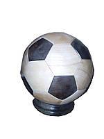 Мяч-копилка большой из дуба и ясеня