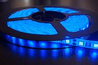 Светодиодная лента smd 5050 ip33 60д/метр синий