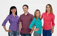 Рубашки с логотипом. Сорочки з логотипом
