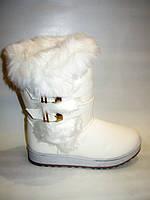 Угги белые зимние С400 38