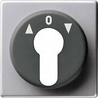 Накладка для 1/2-полюсного выключателей с замковым устройством Gira E22 Алюминий (664203)